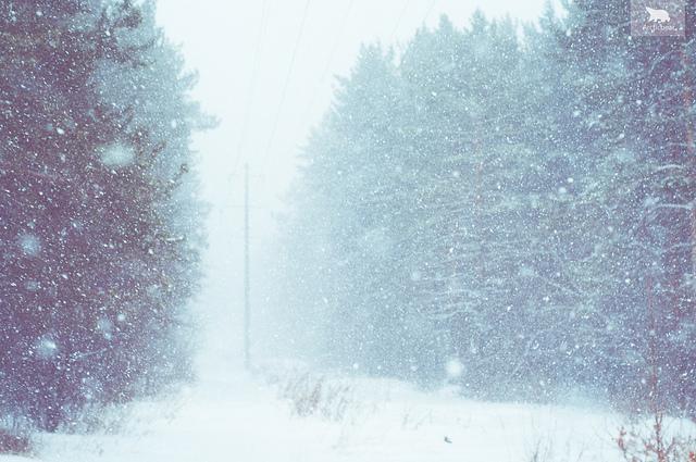 Siberia Snowstorm