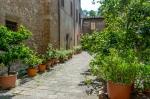 Courtyard, Scuola del Cuoio